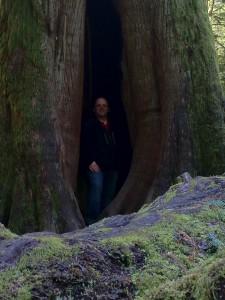 owen in tree